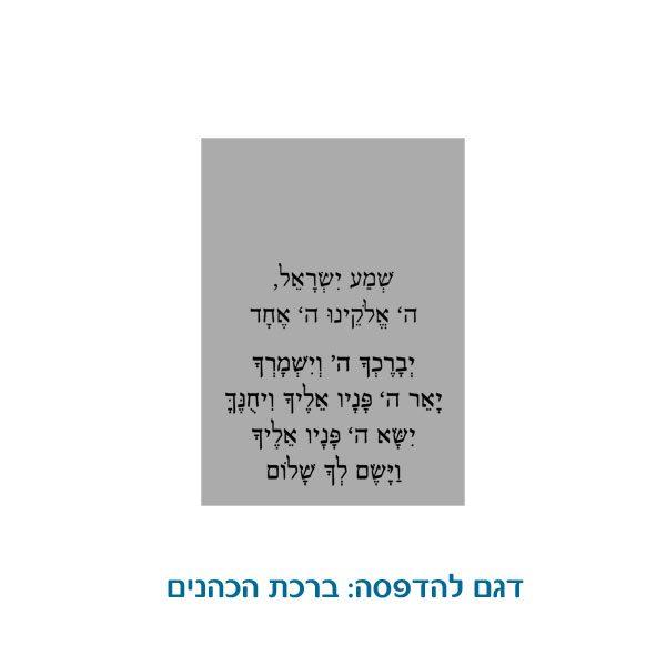 דיסקית רוחנית לחיילים ולאנשי שרות הביטחון - ברכת הכהנים
